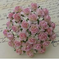 Розы цвета слоновой кости с нежно-розовым 10 мм