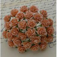 Розы персиковые, 10 мм