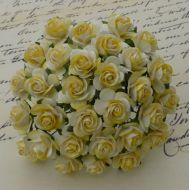 Розы бело-желтые, 10 мм