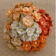 Цветы оранжевая смесь