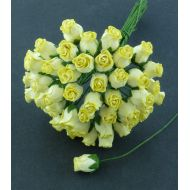 Бутоны роз желтые