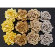 Розы шпалерные желто-коричневые, 35 мм