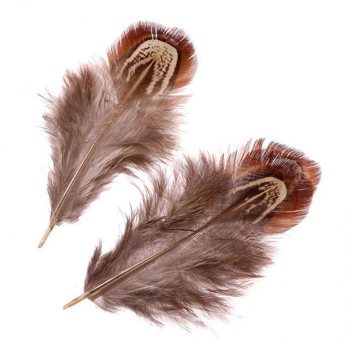 Перья фазана натуральные для скрапбукинга