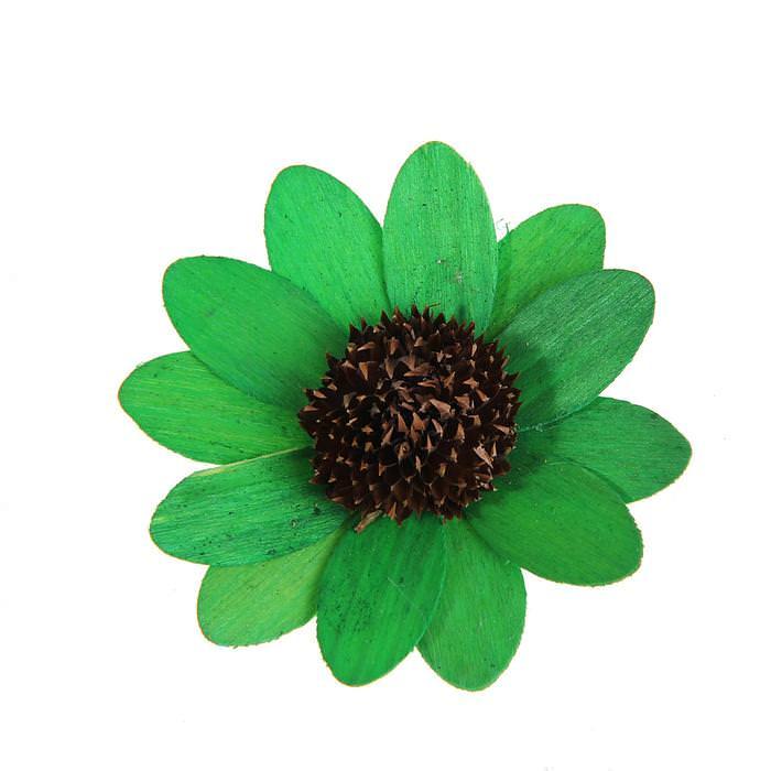 Цветок Астра зеленый для скрапбукинга