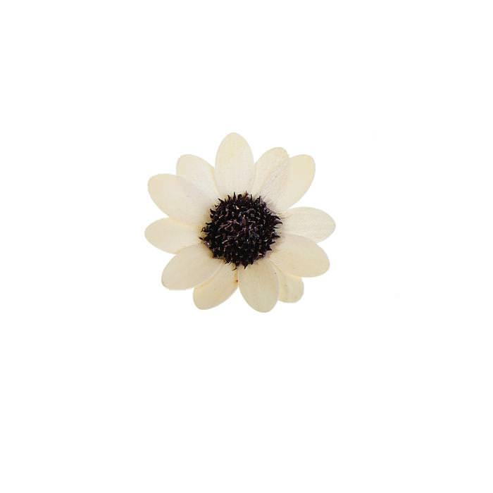 Цветок Астра белый для скрапбукинга
