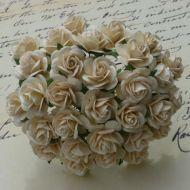 Розы цвета темной слоновой кости, 25 мм