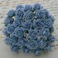 Розы голубого цвета, 20 мм