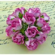 Бутоны большие дикой розы розовые