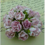 Бутоны большие дикой розы нежно-розовые