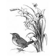Штамп полимерный Spring Dafodills
