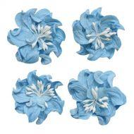 Цветы кудрявой фиалки небесно-голубые