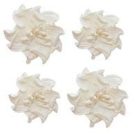 Цветы кудрявой фиалки белые