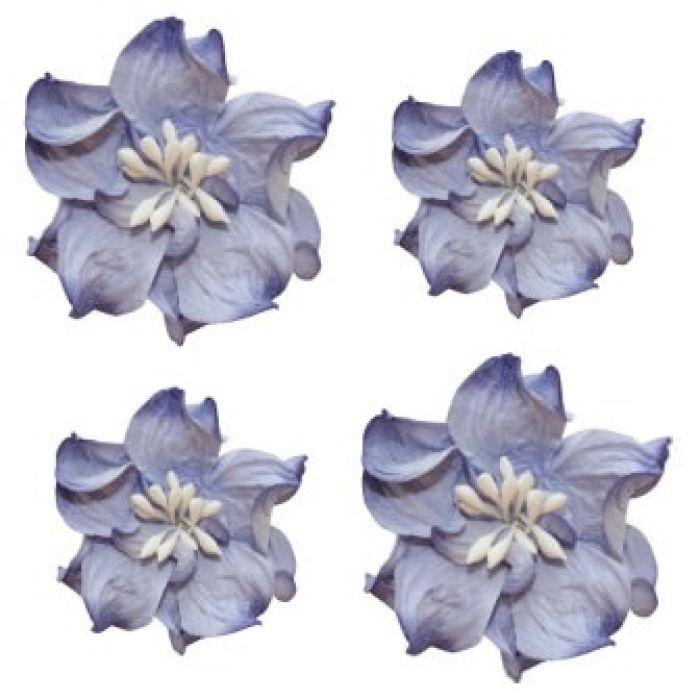 Цветы кудрявой фиалки сине-белые для скрапбукинга