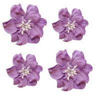 Цветы кудрявой фиалки фиолетовые