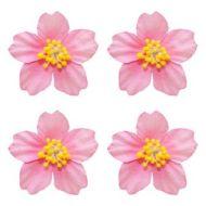 Цветы франжепани розовые