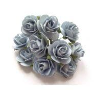Розы голубого цвета, 25 мм