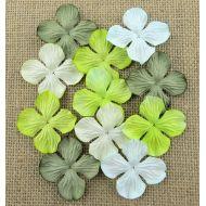 Гортензии зеленые оттенки 35 мм