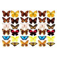 Оверлей объёмные бабочки